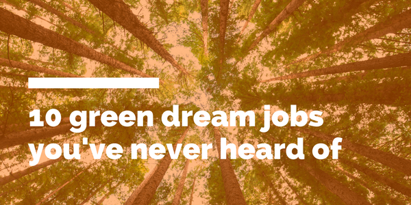 10 dream jobs you've never heard of.