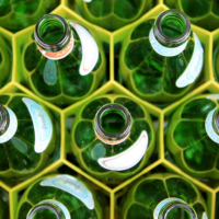 Green bottles in a crate.