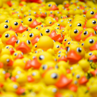 Heap of rubber ducks.